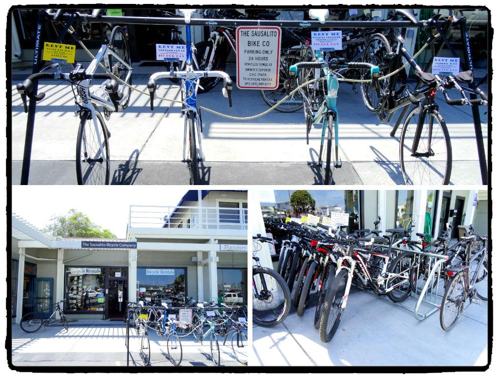 Vários tipos de bicicleta pra escolher