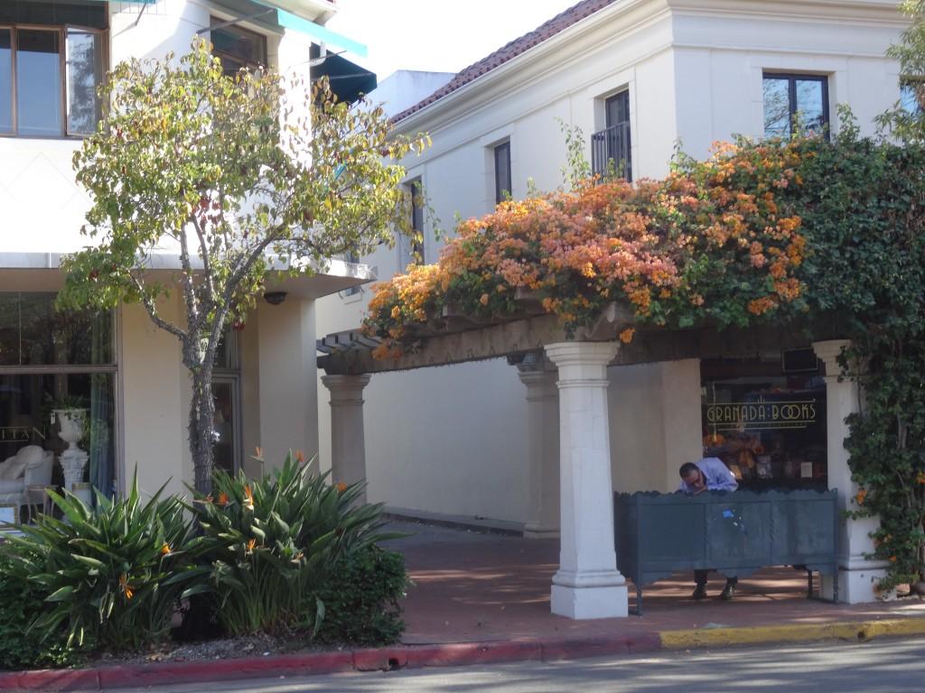 Santa Barbara é um canteiro de flores. Elas estão por todo lado.