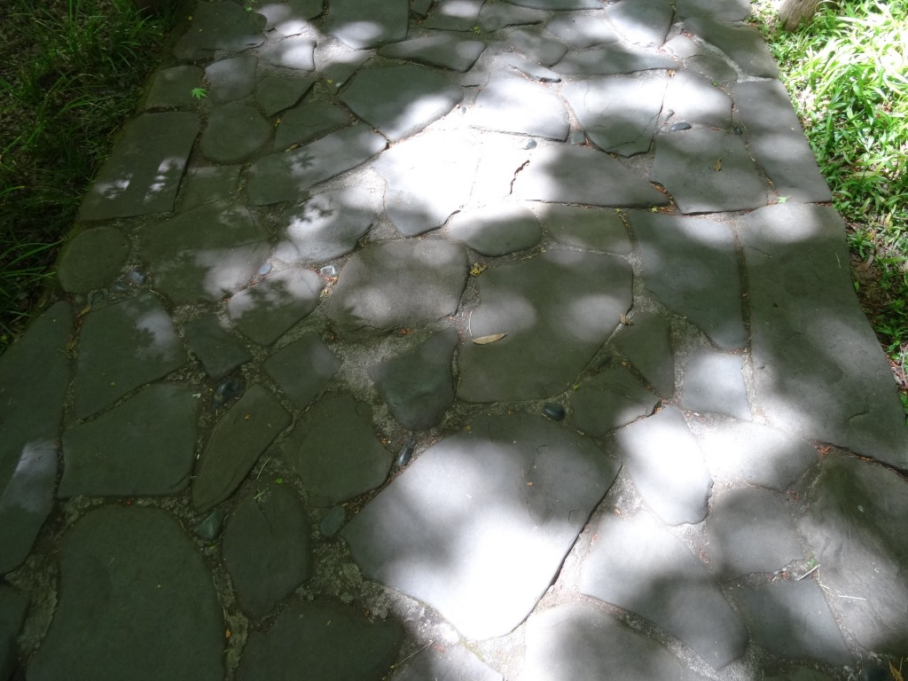 As pedras do chão são típicas de um jardim japônes; quando chove as pedras acumulam água e refletem as flores.