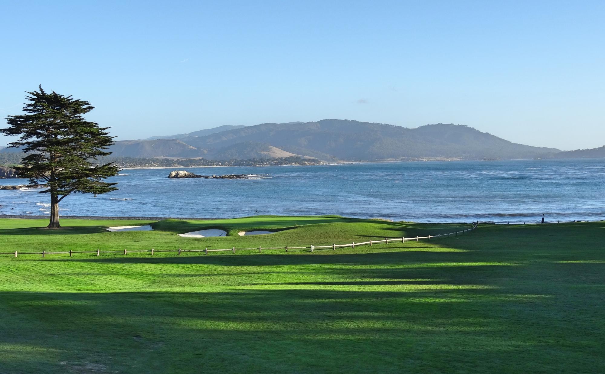 Tour em português no Aquário de Monterey e Carmel