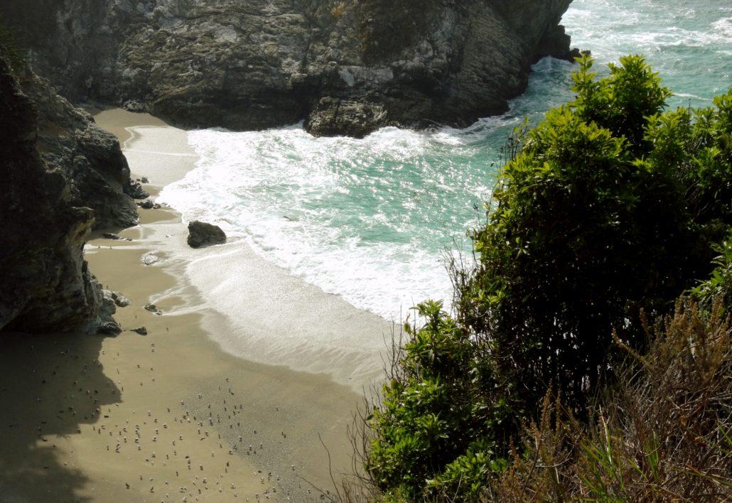 Tour Big Sur e HW-1 - Hotel California Blog