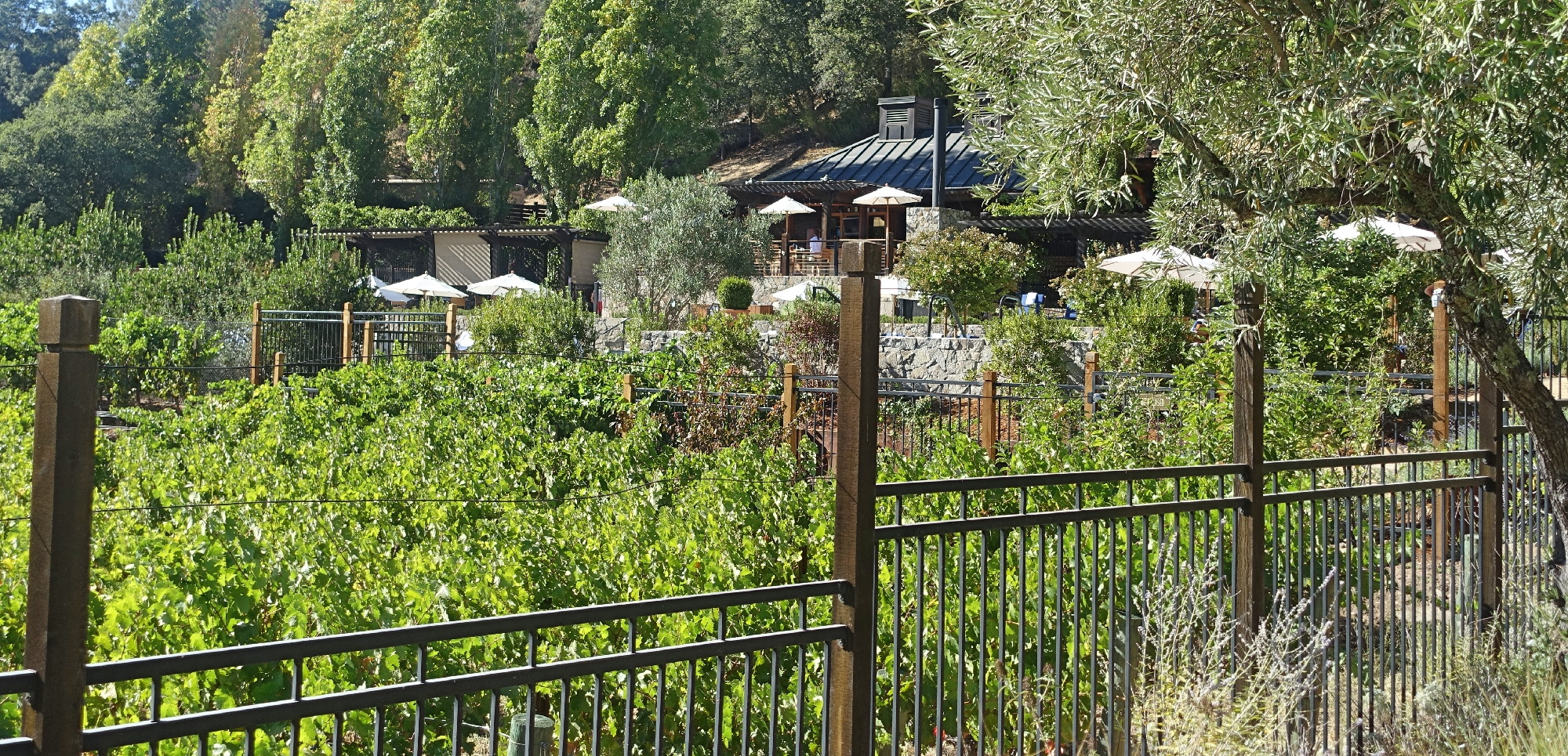 calistoga-ranch-