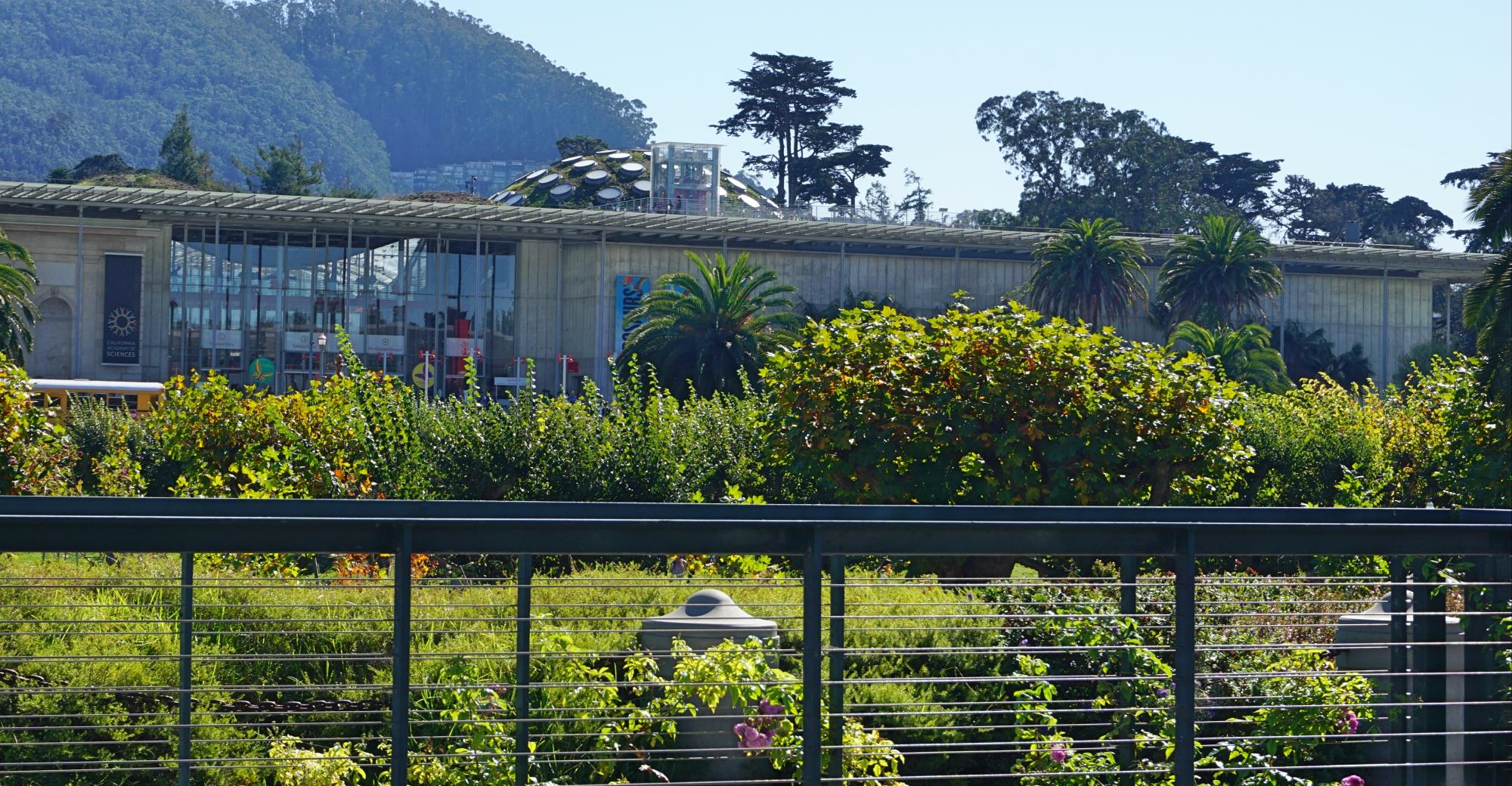 conhecer no Golden Gate Park